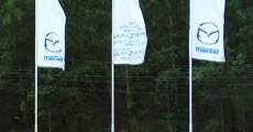 Флаги фирменные сублимационные, материал – флажная сетка