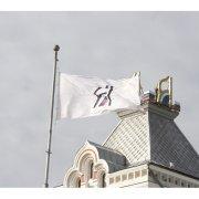 flag-45